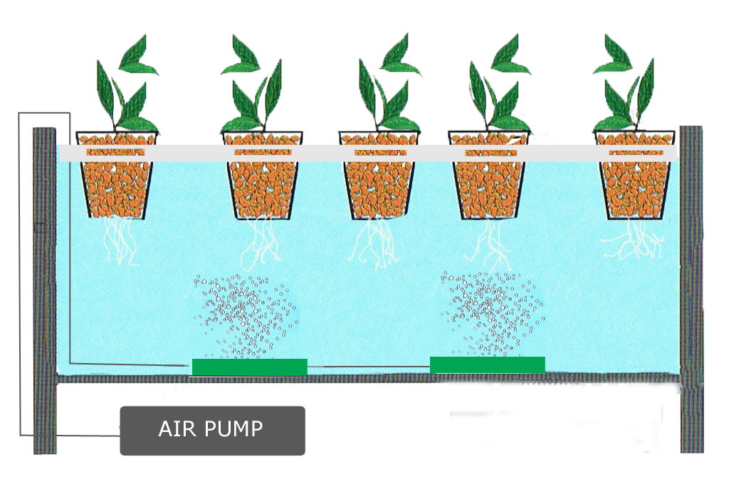 What is a hydroponic system